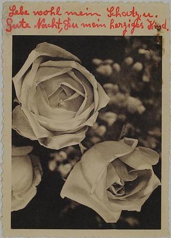 Liebespostkarte mit Rosen