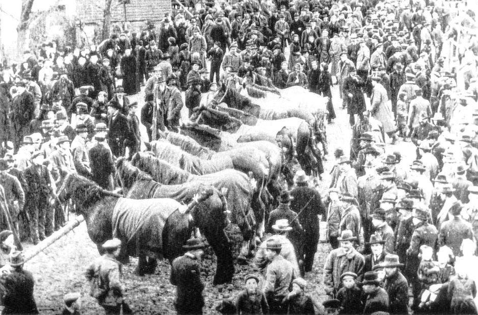 Der Creglinger Pferdemarkt